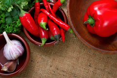 Hot chili peppers and garlic in bowls over canvas Stock Images