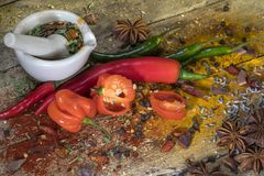 Hot Chili Peppers - Herbs and spices - mortar and pestle Stock Image