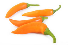 Hot chili peppers Royalty Free Stock Photo