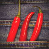 Hot chili peppers in a jeans pocket Royalty Free Stock Photos