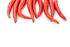 Hot chili peppers long pods base decoration design up frame on isolated white background design menu royalty free stock photos
