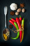 Hot chili peppers, nutmeg, cardamom, turmeric, star anise on a dark background Royalty Free Stock Image