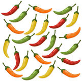 Hot Chili peppers pattern detailed colorful vector illustration template background vector illustration