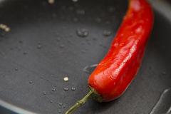 Hot chili peppers. Hot chili pepper red color in the pan Stock Photo