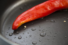 Hot chili peppers. Hot chili pepper red color in the pan Royalty Free Stock Photos