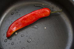 Hot chili peppers. Hot chili pepper red color in the pan Royalty Free Stock Photography