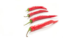 Hot chili peppers Stock Photography
