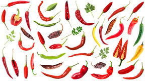 Hot chili peppers on white background Royalty Free Stock Image