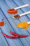 Hot spices Stock Image
