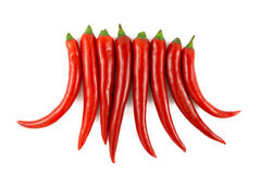 Hot chilie crown Stock Images