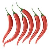 Hot chilli pepper set Stock Photography