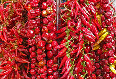 Hot chilli peppers. Red and yellow dried peppers (paprika Royalty Free Stock Photography