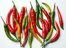 Hot chilli peppers Royalty Free Stock Photos