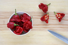 Hot chilli peppers in a bowl over a wooden table. stock image
