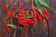 Hot chilli Stock Photography