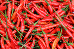 Hot Chillies. Close-up of red chillies or cili api/padi (Malay) on display in market Royalty Free Stock Image