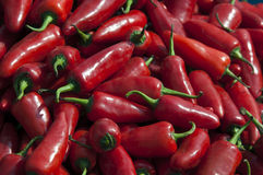 Hot chillies. Close-up of red chilli peppers filling the frame Royalty Free Stock Photos