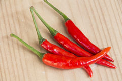 Hot chilly Royalty Free Stock Photography