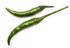 Hot chily. Hot chili for cooking use royalty free stock photography