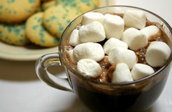 Hot Chocolate. A cup of hot chocolate with marshmellows and a plate of cookies Royalty Free Stock Images