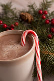 Hot chocolate, candy cane and evergreen boughs. With holly berry close up vertical Stock Photos