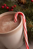 Hot chocolate, candy cane and evergreen boughs. With holly berry close up vertical Royalty Free Stock Image