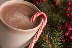 Hot chocolate, candy cane and evergreen boughs. With holly berry close up horizontal Royalty Free Stock Photography