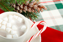 Hot Chocolate Cocoa with Candy Cane Stock Photo