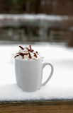 Hot Chocolate or Coffee Stock Photo