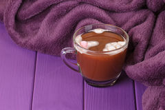 Hot chocolate, cozy knitted blanket. Royalty Free Stock Images