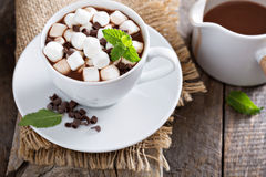 Hot chocolate in a cup Stock Photos