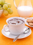 Hot chocolate in the cup with milk, fruit and bisc Royalty Free Stock Images