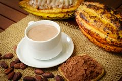 Hot chocolate drink, raw cocoa fruit, cacao beans, powder royalty free stock photography