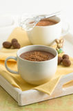 Hot Chocolate Drinks Royalty Free Stock Photos