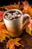 Hot Chocolate in the Fall with marshmellows Stock Photo