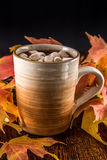 Hot Chocolate in the Fall with marshmellows Royalty Free Stock Image
