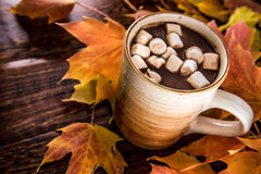 Hot Chocolate in the Fall with marshmellows Royalty Free Stock Photo