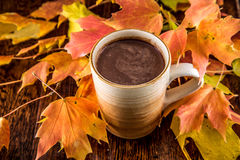 Hot Chocolate in the Fall Royalty Free Stock Images