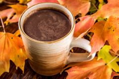 Hot Chocolate in the Fall Royalty Free Stock Photos