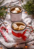 Hot chocolate garnished with marshmallow Stock Photography