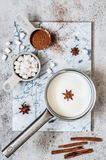 Hot Chocolate Ingredients. Milk, Spices, Cocoa Powder, Marshmallows royalty free stock photography