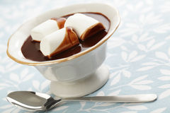 Hot chocolate with marshmallow Stock Images