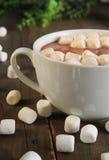 Hot chocolate and marshmallow stock photo