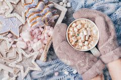 Hot Chocolate with Marshmallow candies. Warming holiday drink with gingerbread cookies. Warm Christmas. Female hands in Royalty Free Stock Photography