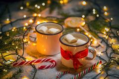 Hot chocolate and marshmallow Stock Image