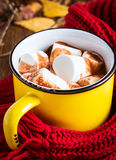 Hot chocolate with marshmallow Royalty Free Stock Photo