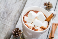 Hot chocolate with marshmallow and pine cones Stock Image