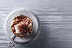 Hot chocolate and marshmallow sprinkled with chocolate chips. Royalty Free Stock Images