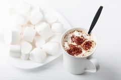 Hot chocolate and marshmallow sprinkled with chocolate chips. Stock Images