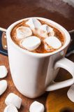 Hot chocolate with marshmallow Stock Photography
